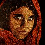 Afghan Girl (Reproduction Canvas Print)